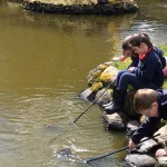 pond dipping . . .