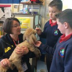 Dogs Trust visit to school