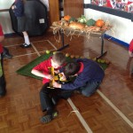 Making harvest display